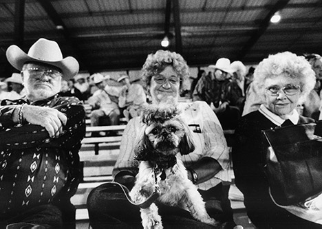 three audience members sitting in bleachers with one holding a dog on her lap